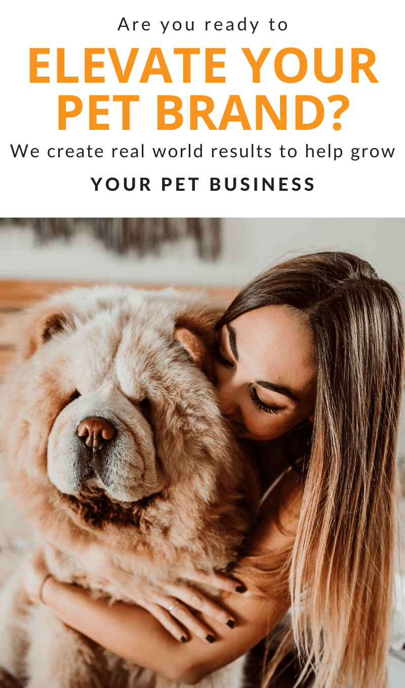 StreetDog Marketing - CTA for Blog